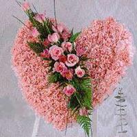 kalp pano karankil ve güller   Kahramanmaraş güvenli kaliteli hızlı çiçek