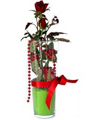 Kahramanmaraş online çiçekçi , çiçek siparişi  Cam yada mika içerisinde 9 adet kirmizi gül - sevdiklerinize özel