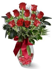 9 adet gül  Kahramanmaraş çiçek mağazası , çiçekçi adresleri  kirmizi gül