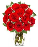 12 adet vazoda kıpkırmızı gül  Kahramanmaraş çiçek yolla , çiçek gönder , çiçekçi