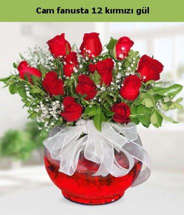 Cam içerisinde 12 adet kırmızı gül  Kahramanmaraş çiçek mağazası , çiçekçi adresleri