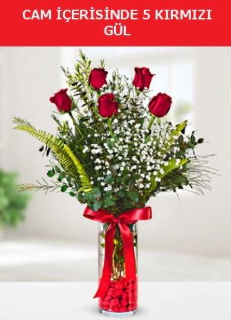 Cam içerisinde 5 adet kırmızı gül  Kahramanmaraş çiçek servisi , çiçekçi adresleri