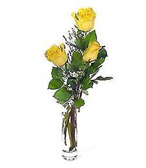Kahramanmaraş güvenli kaliteli hızlı çiçek  3 adet kalite cam yada mika vazo gül