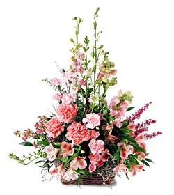 Kahramanmaraş anneler günü çiçek yolla  mevsim çiçeklerinden özel