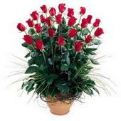 Kahramanmaraş çiçek gönderme sitemiz güvenlidir  10 adet kirmizi gül cam yada mika vazo