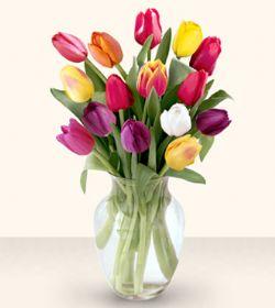Kahramanmaraş kaliteli taze ve ucuz çiçekler  13 adet cam yada mika vazoda laleler