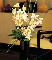 Kahramanmaraş kaliteli taze ve ucuz çiçekler  cam yada mika vazo içerisinde dal orkide