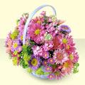 Kahramanmaraş çiçek siparişi sitesi  bir sepet dolusu kir çiçegi  Kahramanmaraş çiçek siparişi vermek