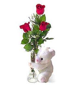 oyuncak ve 3 adet gül  Kahramanmaraş çiçek servisi , çiçekçi adresleri