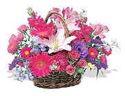küçük karisik özel sepet   Kahramanmaraş çiçek satışı