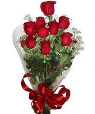 9 adet kaliteli kirmizi gül   Kahramanmaraş internetten çiçek satışı