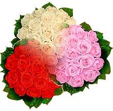 3 renkte gül seven sever   Kahramanmaraş 14 şubat sevgililer günü çiçek