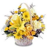 sadece sari çiçek sepeti   Kahramanmaraş çiçek siparişi vermek