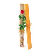 ince  kutuda  1  gül   Kahramanmaraş online çiçek gönderme sipariş