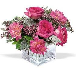Kahramanmaraş İnternetten çiçek siparişi  cam içerisinde 5 gül 7 gerbera çiçegi