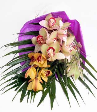 Kahramanmaraş İnternetten çiçek siparişi  1 adet dal orkide buket halinde sunulmakta