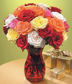 Kahramanmaraş çiçek gönderme  13 adet renkli gül