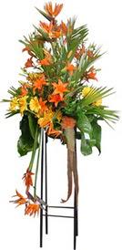 Kahramanmaraş çiçek servisi , çiçekçi adresleri  perförje tanzimi dügün nikah ve açilislara
