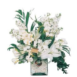 Kahramanmaraş güvenli kaliteli hızlı çiçek  sadece beyazlardan olusmus mevsim cam yada mika tanzim