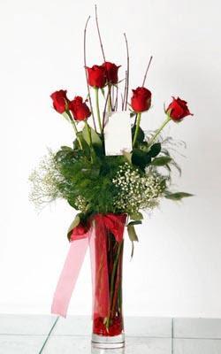 Kahramanmaraş İnternetten çiçek siparişi  6 adet kirmizi gül ve cam yada mika vazo