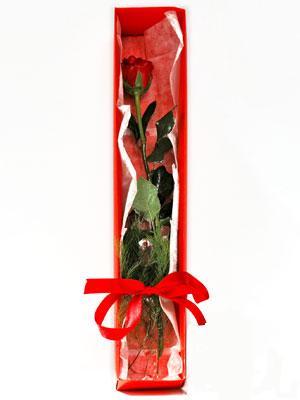 Kahramanmaraş çiçek siparişi sitesi  1 adet kutuda gül