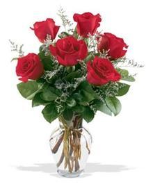 Kahramanmaraş çiçek siparişi vermek  7 adet kirmizi gül cam yada mika vazoda sevenlere