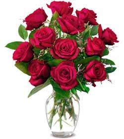Kahramanmaraş online çiçekçi , çiçek siparişi  1 düzine kirmizi gül sevenlere özel vazo gülleri