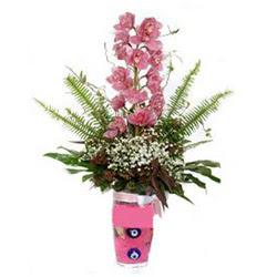 Kahramanmaraş hediye sevgilime hediye çiçek  cam yada mika vazo içerisinde tek dal orkide çiçegi