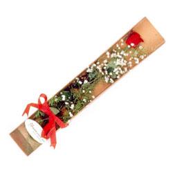Kahramanmaraş 14 şubat sevgililer günü çiçek  Kutuda tek 1 adet kirmizi gül çiçegi