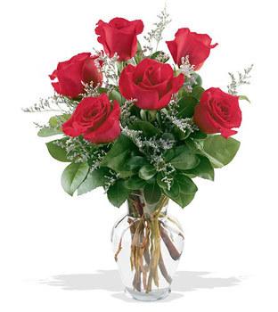 Kahramanmaraş İnternetten çiçek siparişi  cam yada mika vazoda 6 adet kirmizi gül