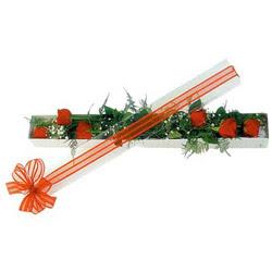 Kahramanmaraş çiçek servisi , çiçekçi adresleri  6 adet kirmizi gül kutu içerisinde