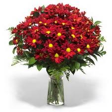 Kahramanmaraş online çiçek gönderme sipariş  Kir çiçekleri cam yada mika vazo içinde