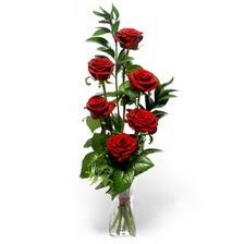 Kahramanmaraş çiçek gönderme sitemiz güvenlidir  mika yada cam vazoda 6 adet essiz gül