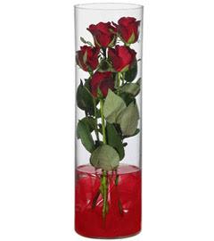 cam içerisinde 7 adet kirmizi gül  Kahramanmaraş kaliteli taze ve ucuz çiçekler