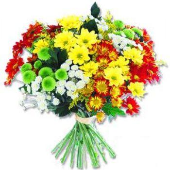 Kir çiçeklerinden buket modeli  Kahramanmaraş online çiçekçi , çiçek siparişi