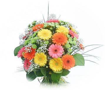 13 adet gerbera çiçegi buketi  Kahramanmaraş online çiçekçi , çiçek siparişi