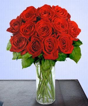 Anneme 12 adet cam içerisinde kirmizi gül  Kahramanmaraş çiçek servisi , çiçekçi adresleri