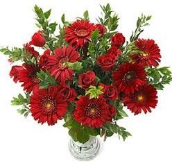 5 adet kirmizi gül 5 adet gerbera aranjmani  Kahramanmaraş hediye sevgilime hediye çiçek