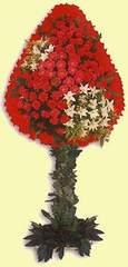 Kahramanmaraş cicek , cicekci  dügün açilis çiçekleri  Kahramanmaraş çiçek satışı