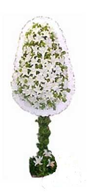 Kahramanmaraş çiçek servisi , çiçekçi adresleri  nikah , dügün , açilis çiçek modeli  Kahramanmaraş online çiçekçi , çiçek siparişi