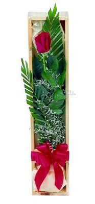 1 adet kutuda kirmizi gül  Kahramanmaraş çiçek siparişi vermek