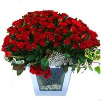 Kahramanmaraş kaliteli taze ve ucuz çiçekler   101 adet kirmizi gül aranjmani