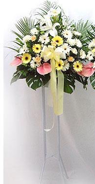 Kahramanmaraş online çiçekçi , çiçek siparişi   perförje çiçegi dügün çiçekleri