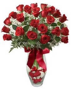 17 adet essiz kalitede kirmizi gül  Kahramanmaraş ucuz çiçek gönder