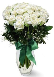 19 adet essiz kalitede beyaz gül  Kahramanmaraş kaliteli taze ve ucuz çiçekler
