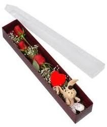 kutu içerisinde 3 adet gül ve oyuncak  Kahramanmaraş İnternetten çiçek siparişi
