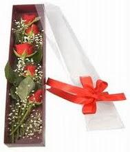 kutu içinde 5 adet kirmizi gül  Kahramanmaraş güvenli kaliteli hızlı çiçek