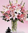 Kahramanmaraş çiçekçiler  Kazablanka biçme vazoda