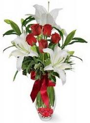 Kahramanmaraş yurtiçi ve yurtdışı çiçek siparişi  5 adet kirmizi gül ve 3 kandil kazablanka