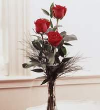 Kahramanmaraş çiçek mağazası , çiçekçi adresleri  Vazoda 3 adet güzel gül